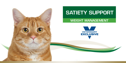 Satiety Support Weight Management Royal Canin