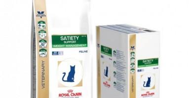 Satiety Support Weight Management