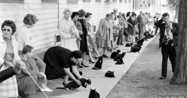 Crne mačke na audiciji za film (1961.)