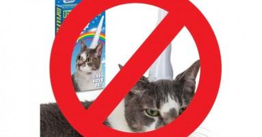 10 neverovatnih proizvoda za ljubitelje i vlasnike mačaka